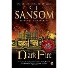 Dark Fire: A Matthew Shardlake Tudor Mystery (Matthew Shardlake Mysteries Book 2)