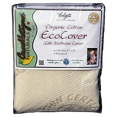 Colgate Organic Cotton Crib Fitted Mattress Cover - Ecru