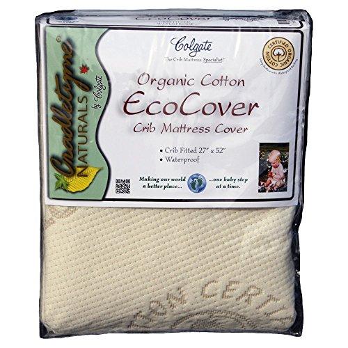 Colgate-Organic-Cotton-Crib-Fitted-Mattress-Cover-Ecru