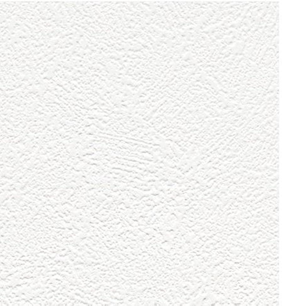 敬な歯科医ポテト床張替 リフォーム (工事費込)   居室   畳からフローリング 張替え   パナソニック KESWV3SNJY