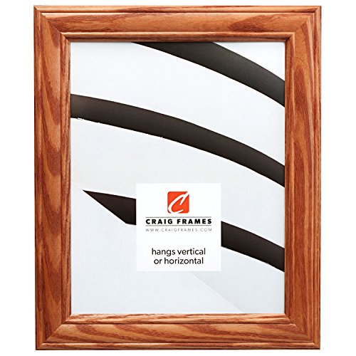 Honey Oak Frame - Craig Frames 59504100 11 by 14-Inch Picture Frame, Wood Grain Finish, 1.25-Inch Wide, Honey Oak