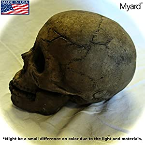 Amazon Com Myard Fireproof Human Fire Pit Skull Gas Log