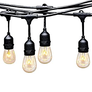 Ashialight 12 Volt Outdoor String Lights with Hanging Sockets - LED String Lights, Low voltage, 12 Volt, 48 Ft, Cafe Edison Vintage Bistro Weatherproof Strand for Patio Garden Porch Backyard Party