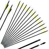 """SinoArt 30"""" Carbon Arrows 3""""/4"""" Vane with Screw-in Points Replaceable Tips for Recuve"""