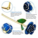 Ejoyous-24K-Gold-Plated-Rose-Gold-Dipped-Real-Rose-Flower-Gift-for-Lover-Mom-Wife-Daughter-Girlfriend-Present-on-Valentines-Day-Wedding-Anniversary-Birthday-Proposal-Reward-Blue-with-Stand