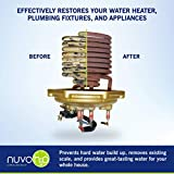 NuvoH2O Manor + Taste Complete Water Softener