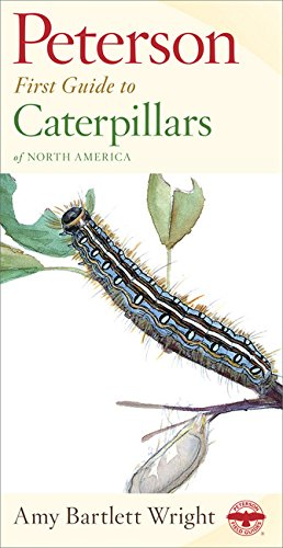 peterson-first-guide-to-caterpillars-of-north-america
