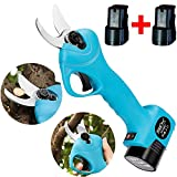 GTTBS-jd Electric Pruner, Electric Scissors for Boxwood Garden Lawn, Cordless Pruning Shears Rechargeable Pruning Shears Plum Grapes Olive Trees 25Mm (Tender Branch) with 2 2Ah Lithium Battery