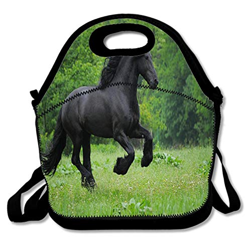 Bjiansoah Horsepower Horses Black Boys Girls Kids Insulated School Travel Outdoor Thermal Waterproof Carrying Lunch Tote Bag Cooler Box Neoprene Lunchbox Container Case