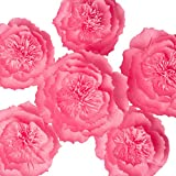 Paper Flowers Decorations, Giant Paper Flowers, Large Crepe Paper Flowers (Pink, Set of 6), Handcrafted Flowers for Wedding Backdrop, Baby Shower Decorations, Nursery Wall Decorations, Bridal Shower