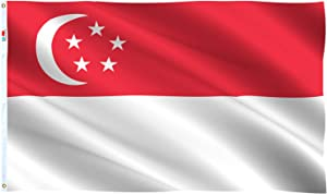 rhungift Singapore Flag Large 3x5 Ft, Moderate-Outdoor Both Sides 100D Polyester,Canvas Header and Double Stitched - Brass Grommets for Easy Display, 3' x 5' Singaporean Flags