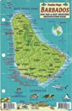 Barbados Dive Map & Reef Creatures Guide Franko Maps Laminated Fish Card