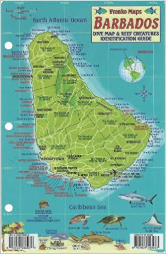 Barbados Dive Map Reef Creatures Guide Franko Maps Laminated Fish