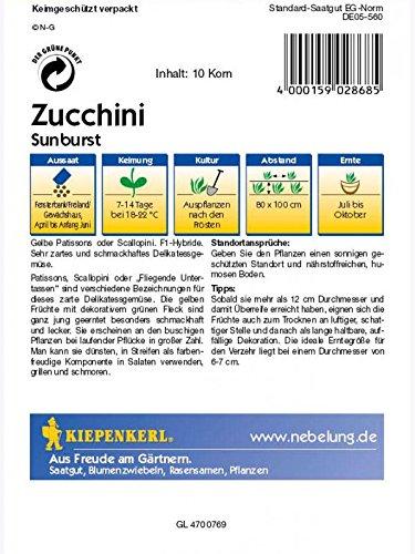 Sechskantmuttern M10x1 mit Links Feingewinde DIN 934 8 ISO 4023 Stahl blank 1 St/ück
