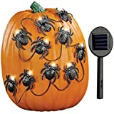 Collections Etc Solar Halloween Spiders Pumpkin Poke-Ins, Outdoor Light Up Decorations