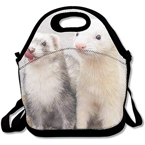 (Emmwhite Lightweight Gourmet Lunch Bag Cute Ferret 3D Print Lunch Box Handbag for Kids and)