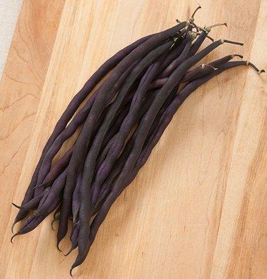 David's Garden Seeds Bean Pole Carminat DSG3170 (Purple) 50 Open Pollinated Seeds