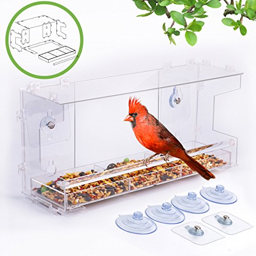 Best Bird Feeder For Window | 100% Acrylic DIY ...