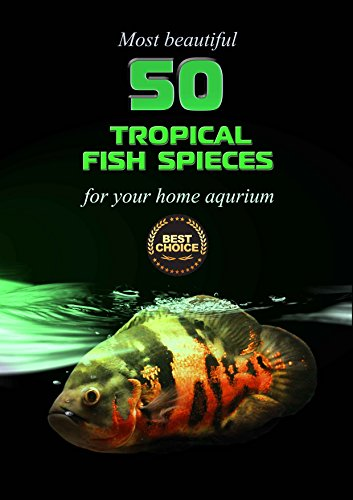 50 Tropical Fish Species For Your Home Aquarium Most Beautiful