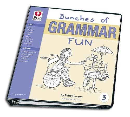 BUNCHES OF GRAMMAR FUN BINDER 3: Randy Larson: 0749844006976 ...