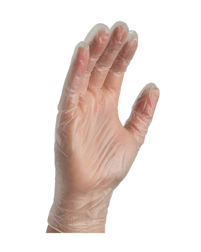 Food Service Clear Vinyl Gloves, Disposable Glove,industrial Glove,clear, Latex Free And Allergy Free, Plastic, Work, Cleaning, Powder Free (Size LG-500 Pack) Sara Glove