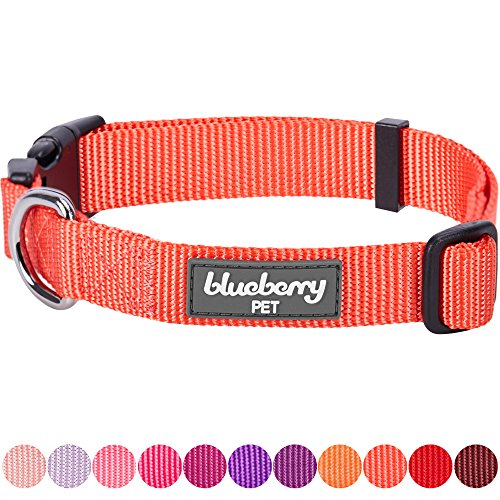 "Blueberry Pet 32 Colors Classic Dog Collar, Hot Coral, X-Small, Neck 8""-11"", Collars for Dogs"