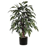 Vickerman TBU2840-06 Everyday Mango Bush, Green, 4'
