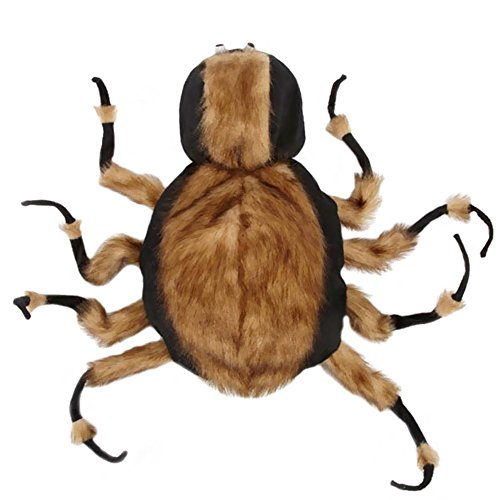 Zack  (Tarantula Pet Costume)