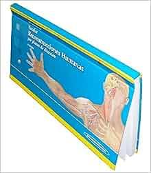 Reconstrucciones Humanas.Por Planos de Disección. Incluye CD-Rom