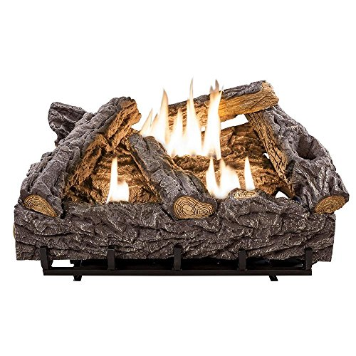 24 in. Timber Creek Vent Free Dual Fuel Gas Log Set with Thermostat (Vent Free 24 Inch Gas Logs compare prices)