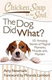 chicken soup for the soul dog - Chicken Soup for the Soul: The Dog Did What?: 101 Amazing Stories of Magical Moments, Miracles and... Mayhem