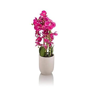 Orchideen Beleuchtung | Online Fuchs Kunstliche Orchideen Blumen Mit Led Beleuchtung Und