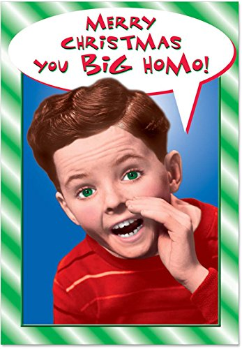12 Boxed 'You Big Homo' Christmas Cards with Envelopes 4.63 x 6.75 inch, Funny Adult Humor Christmas Notes, Happy Holidays with Homos, Hilarious Gay Christmas Holiday Cards B1436