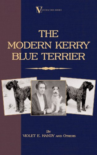 The Modern Kerry Blue Terrier (A Vintage Dog Books Breed Classic)