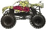 Hot Wheels Monster Jam Team Hot Wheels Vehicle 1:24 Scale