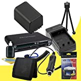 NP-FV100 Lithium Ion Replacement Battery w/Charger + Memory Card Reader/Wallet + Deluxe Starter Kit for Sony NEXVG10, NEXVG20 Interchangeable Lens HD Handycam Camcorder DavisMAX Accessory Bundle