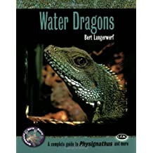 Water Dragons: A Complete Guide to Physignathus and More