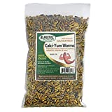 Exotic Nutrition Bulk Dried Calci-Yum Worms - Black Soldier Fly Larvae - Insect for Chickens, Bluebirds, Wild Birds - BSFL (1 lb.)