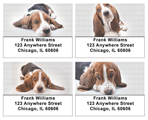 Cute Basset Hounds Address Labels (Dog Address Labels)