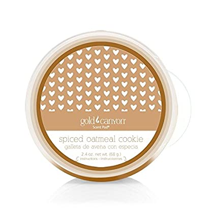 Gold Canyon Candle Spiced Oatmeal Cookie Scent Pod