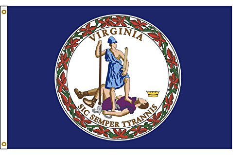 Virginia 5ftx8ft Nylon State Flag 5×8 Made In USA 5'x8′ For Sale