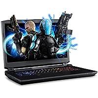 SAGER NP9172 17.3 FHD IPS G-Sync VR Ready Gaming Laptop, Intel i7-7700K, NVIDIA GeForce GTX 1080 8GB GDDR5, 16GB RAM, 1TB M.2 SSD, Windows 10 Home
