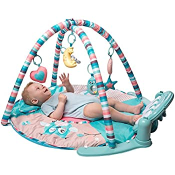 Amazon Com Infantino Grow With Me Activity Gym And Ball