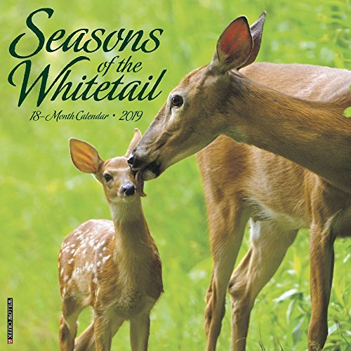 Seasons of the Whitetail 2019 Wall Calendar -