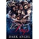 12 Days: A Dark Reverse Harem Christmas Romance
