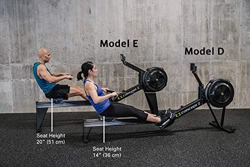 model d vs model 3 comparison