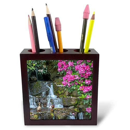 (3dRose Danita Delimont - Scenics - USA, Oregon. Mallard Ducks Next to Waterfall and Rhododendron. - 5 inch Tile Pen Holder (ph_314985_1))