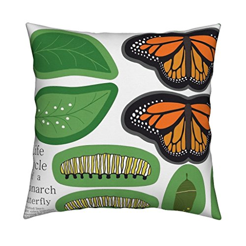 Roostery Butterfly Eco Canvas Throw Pillow Cover Butterfly by Loopy Canadian Cover Only by