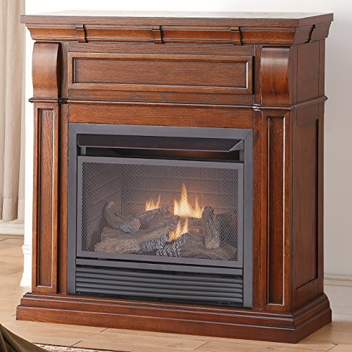 Duluth Forge Dual Fuel Vent Free Fireplace - 26,000 BTU, Remote Control, Chestnut Oak - Propane Vent Gas Direct Fireplace