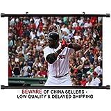 David Ortiz MLB Baseball Superstar Fabric Wall Scroll Poster (32x21) Inches